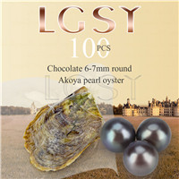 wholesale 6-7mm saltwater round Akoya Chocolate pearl oyster 100pcs