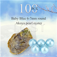 wholesale 6-7mm Baby blue saltwater round Akoya pearl oyster 100pcs