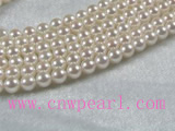 6-6.5mm AAA+ white akoya pearl strands wholesale