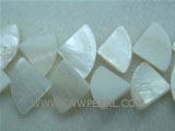 "16"" 8-12mm white sector loose shell strand"